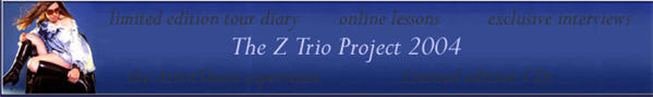 The Z Trio Project